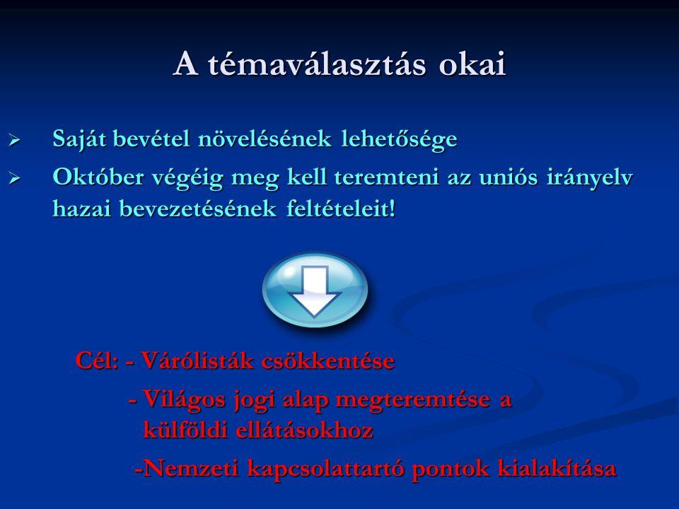 A betegforgalom növelésének ösztönzése  2012.