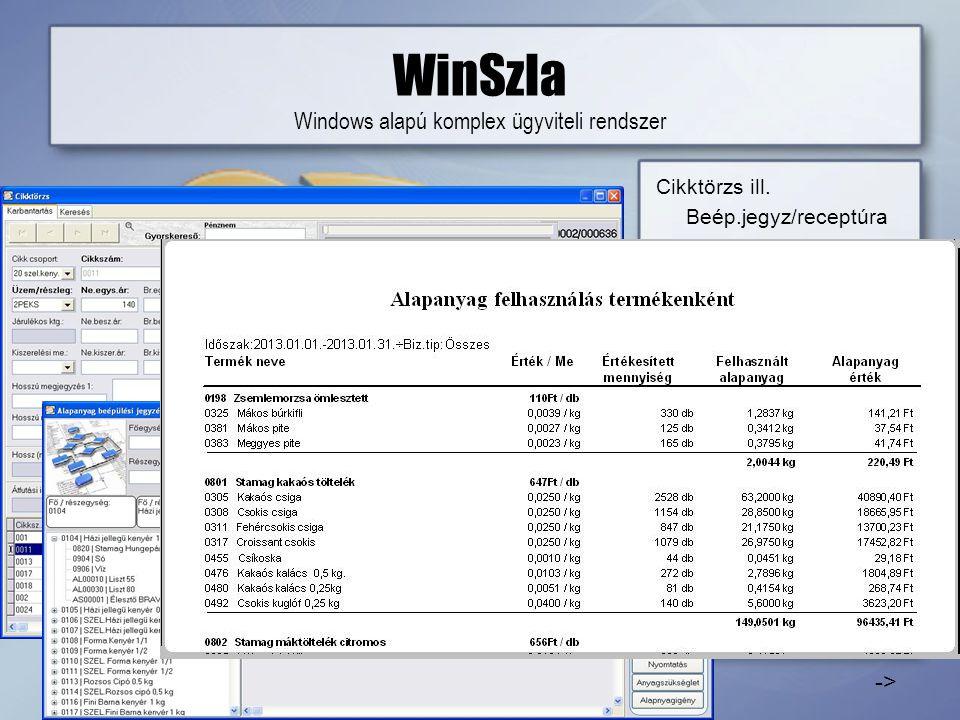 WinSzla Windows alapú komplex ügyviteli rendszer Cikktörzs ill.