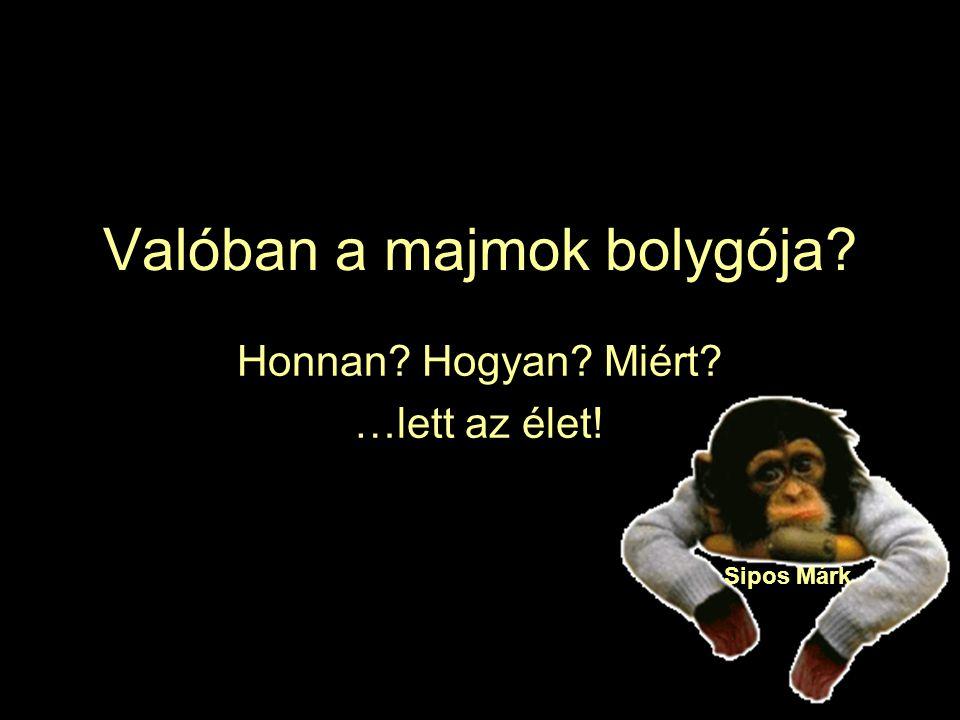 Valóban a majmok bolygója? Honnan? Hogyan? Miért? …lett az élet! Sipos Márk