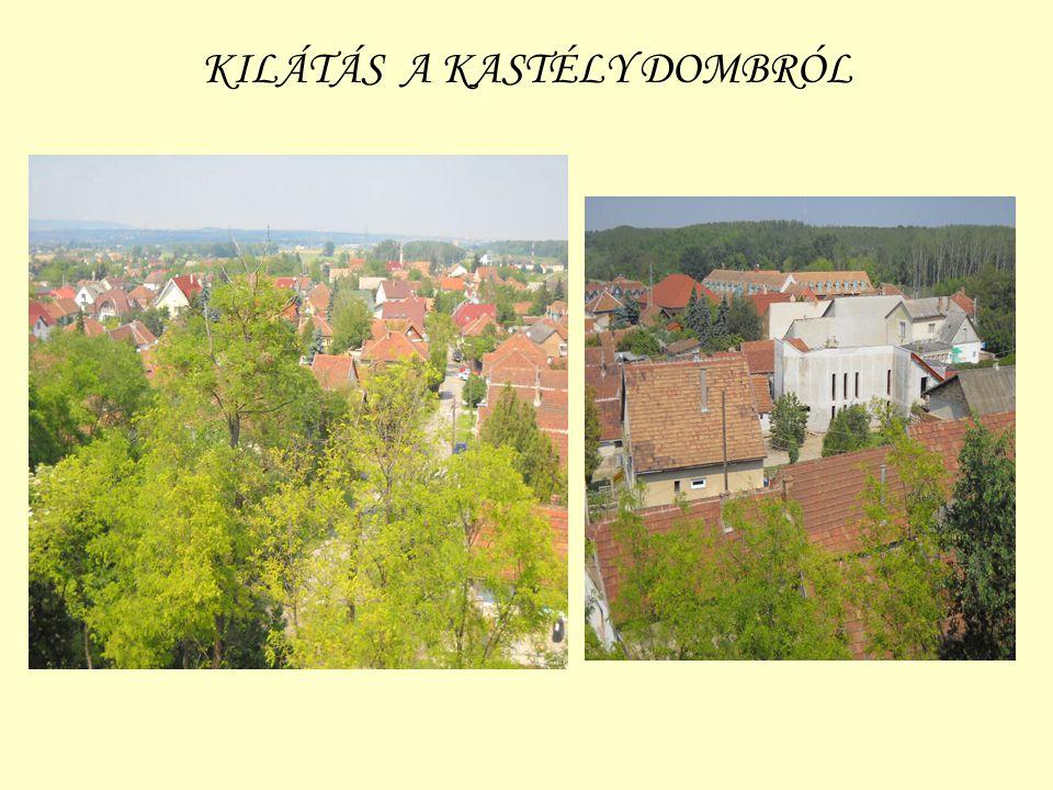 KILÁTÁS A KASTÉLY DOMBRÓL