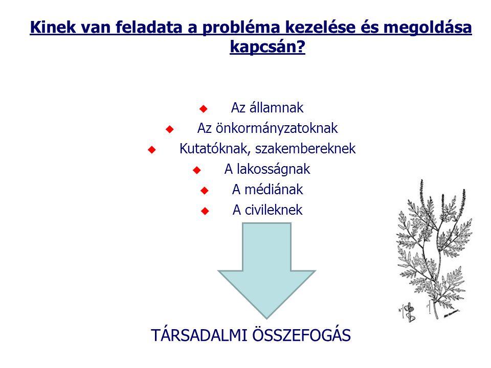 Kinek van feladata a probléma kezelése és megoldása kapcsán?  Az államnak  Az önkormányzatoknak  Kutatóknak, szakembereknek  A lakosságnak  A méd
