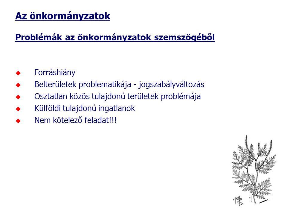 Az önkormányzatok Problémák az önkormányzatok szemszögéből  Forráshiány  Belterületek problematikája - jogszabályváltozás  Osztatlan közös tulajdon