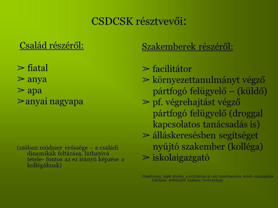 CSDCSK résztvevői : Család részéről: ➢ fiatal ➢ anya ➢ apa ➢ anyai nagyapa (szóban:módszer erőssége – a családi dinamikák feltárása, láthatóvá tétele-