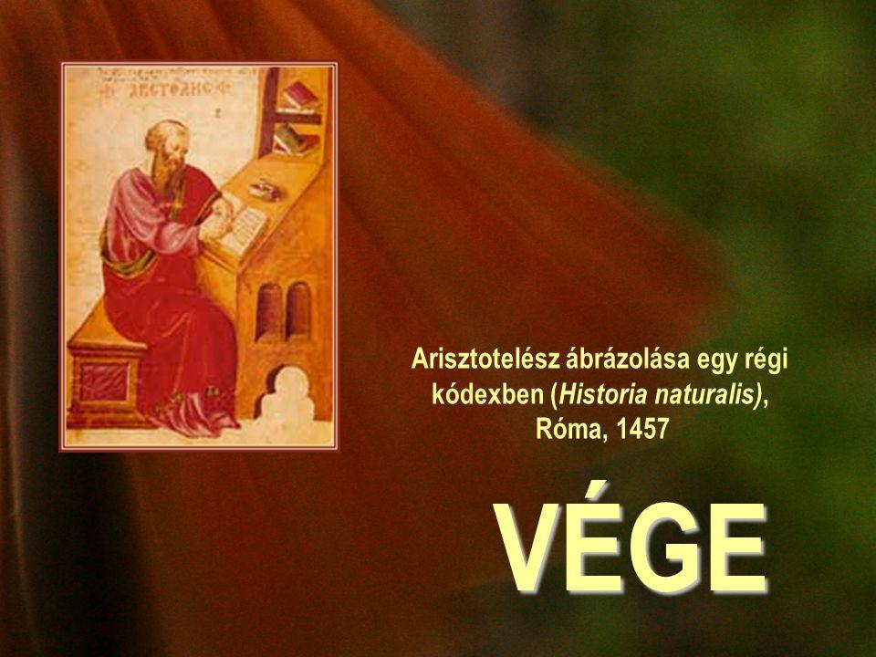 VÉGE Arisztotelész ábrázolása egy régi kódexben ( Historia naturalis), Róma, 1457