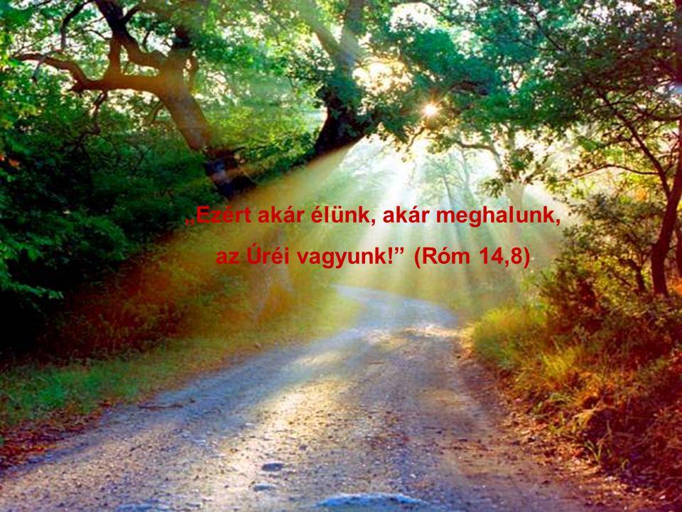 """""""Aki nem szeret, nem ismerte meg az Istent; mert az Isten szeretet."""""""