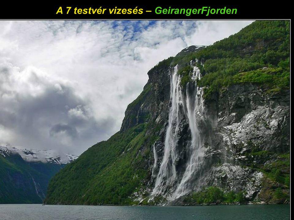 Sarki sirály - GeirangerFjorden