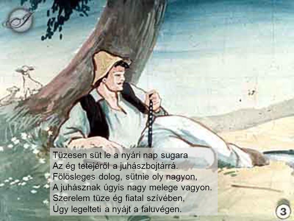 Kukoricza Jancsi nem veszi tréfának.S ily szóval megy neki a török basának: Atyafi.