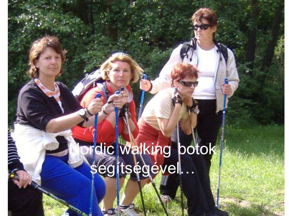 Nordic walking botok segítségével…