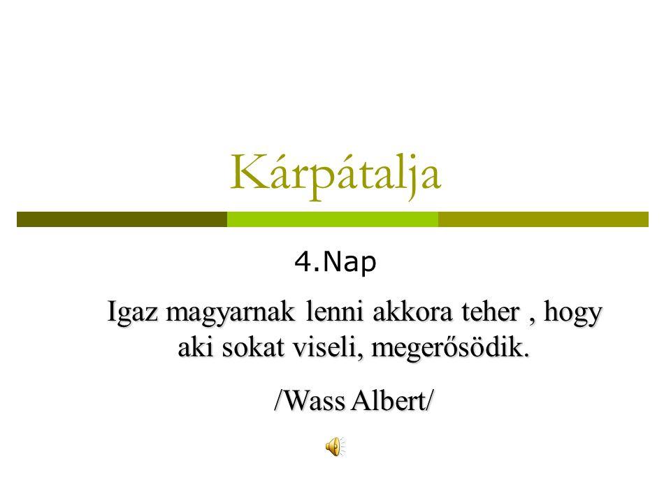 Kárpátalja 4.Nap Igaz magyarnak lenni akkora teher, hogy aki sokat viseli, megerősödik. /Wass Albert/