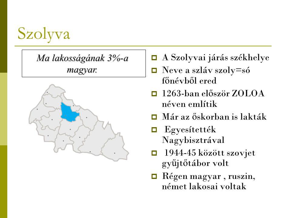 Szolyva  A Szolyvai járás székhelye  Neve a szláv szoly=só f ő névb ő l ered  1263-ban el ő ször ZOLOA néven említik  Már az ő skorban is lakták 