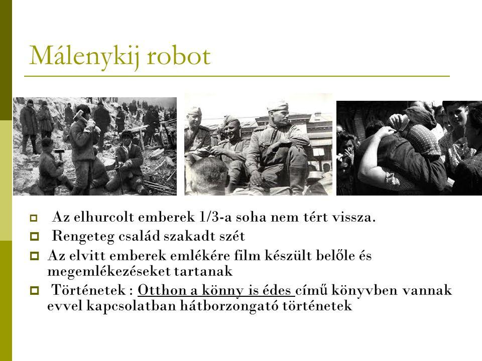 Málenykij robot  A málenykij robot emlékére készült m ű emlékek