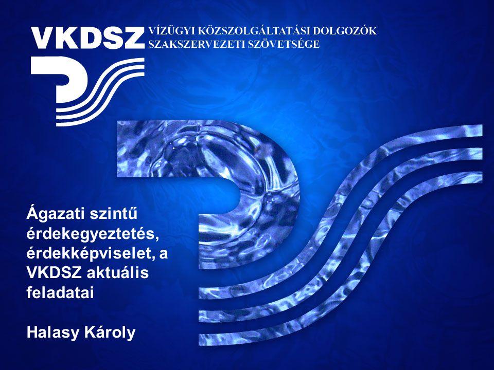 Ágazati szintű érdekegyeztetés, érdekképviselet, a VKDSZ aktuális feladatai Halasy Károly