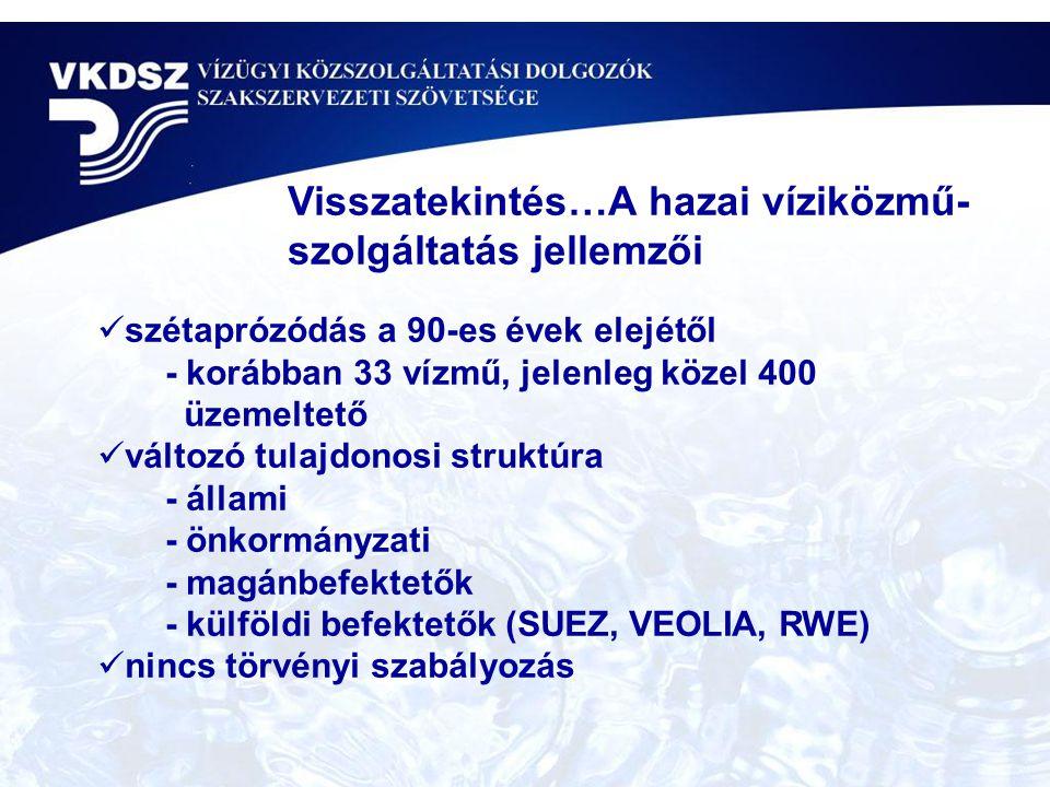  szétaprózódás a 90-es évek elejétől - korábban 33 vízmű, jelenleg közel 400 üzemeltető  változó tulajdonosi struktúra - állami - önkormányzati - magánbefektetők - külföldi befektetők (SUEZ, VEOLIA, RWE)  nincs törvényi szabályozás Visszatekintés…A hazai víziközmű- szolgáltatás jellemzői