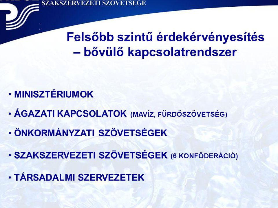 A VKDSZ aktuális feladatai  Kapcsolatépítés a kormányváltást követően  Alkotmánybírósághoz fordultunk a CXXII.