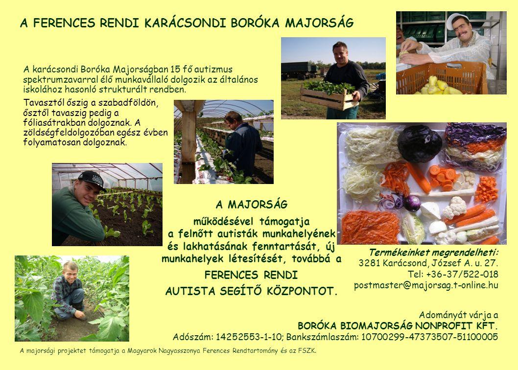 A majorsági projektet támogatja a Magyarok Nagyasszonya Ferences Rendtartomány és az FSZK.