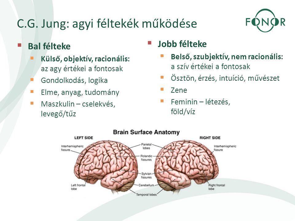 C.G. Jung: agyi féltekék működése  Bal félteke  Külső, objektív, racionális: az agy értékei a fontosak  Gondolkodás, logika  Elme, anyag, tudomány