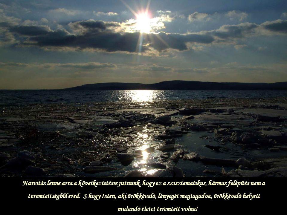 S mivel egyiknek sincs önmagában élete, és nem képes táplálás nélkül funkcionálni, így szellemünk is csak az Istennel való közösségen keresztül életképes.