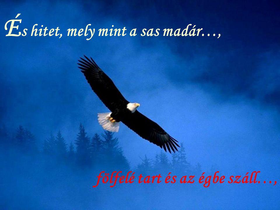 É s hitet, mely mint a sas madár…, fölfelé tart és az égbe száll…,