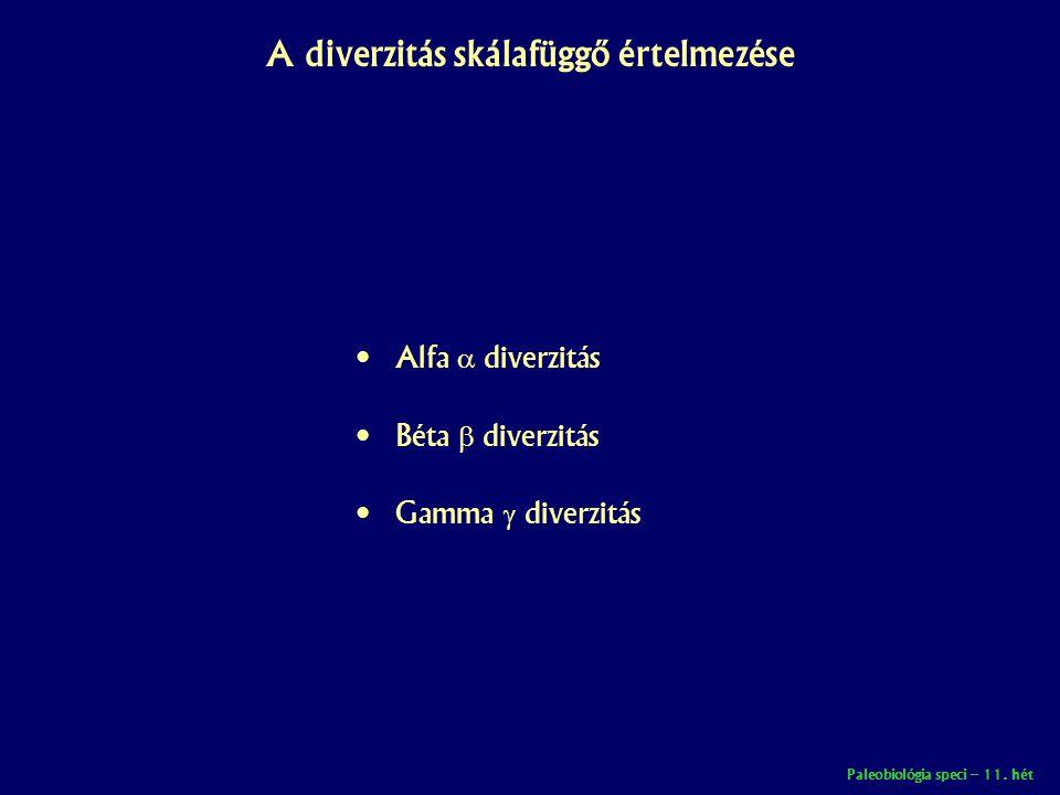Paleobiológia speci – 11. hét A diverzitás skálafüggő értelmezése • Alfa  diverzitás • Béta  diverzitás • Gamma  diverzitás