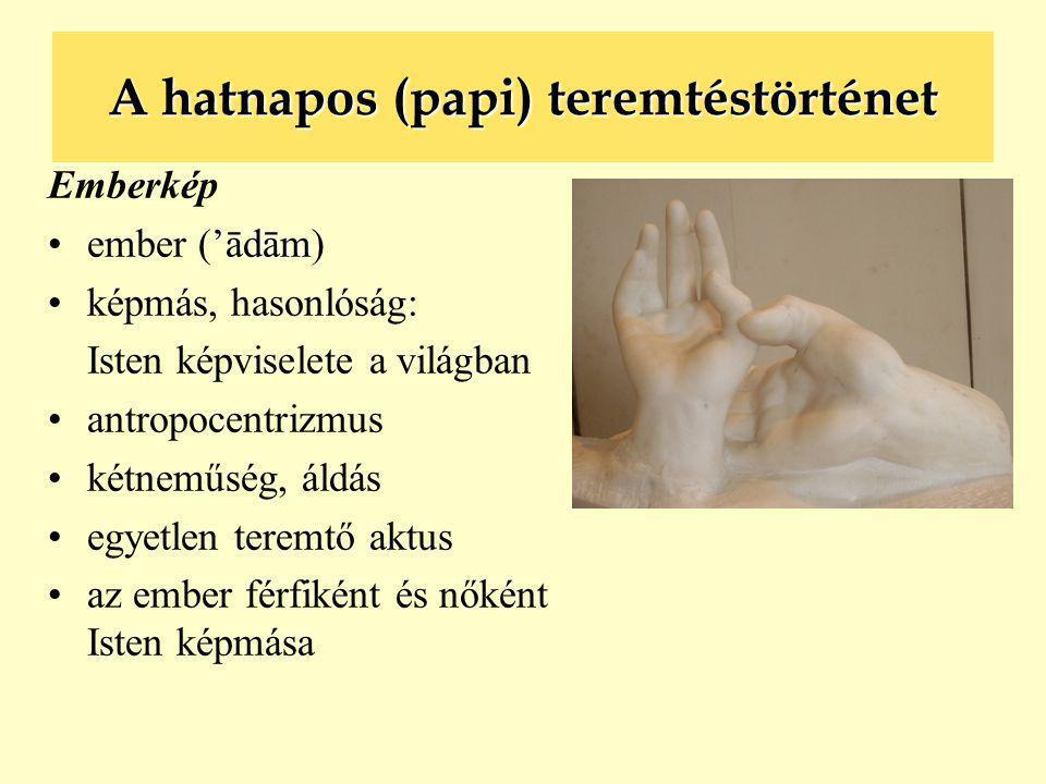 A hatnapos (papi) teremtéstörténet Emberkép 'ādām •ember ('ādām) •képmás, hasonlóság: Isten képviselete a világban •antropocentrizmus •kétneműség, áld
