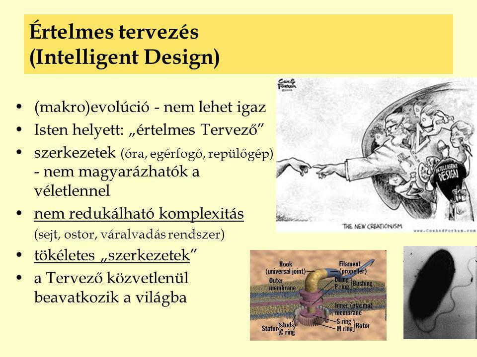 """Értelmes tervezés (Intelligent Design) •(makro)evolúció - nem lehet igaz •Isten helyett: """"értelmes Tervező"""" •szerkezetek (óra, egérfogó, repülőgép) -"""
