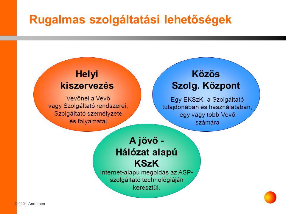 © 2001 Andersen Rugalmas szolgáltatási lehetőségek Helyi kiszervezés Közös Szolg.