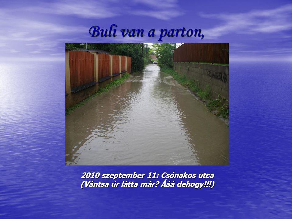 Buli van a parton, 2010 szeptember 11: Csónakos utca (Vántsa úr látta már Ááá dehogy!!!)