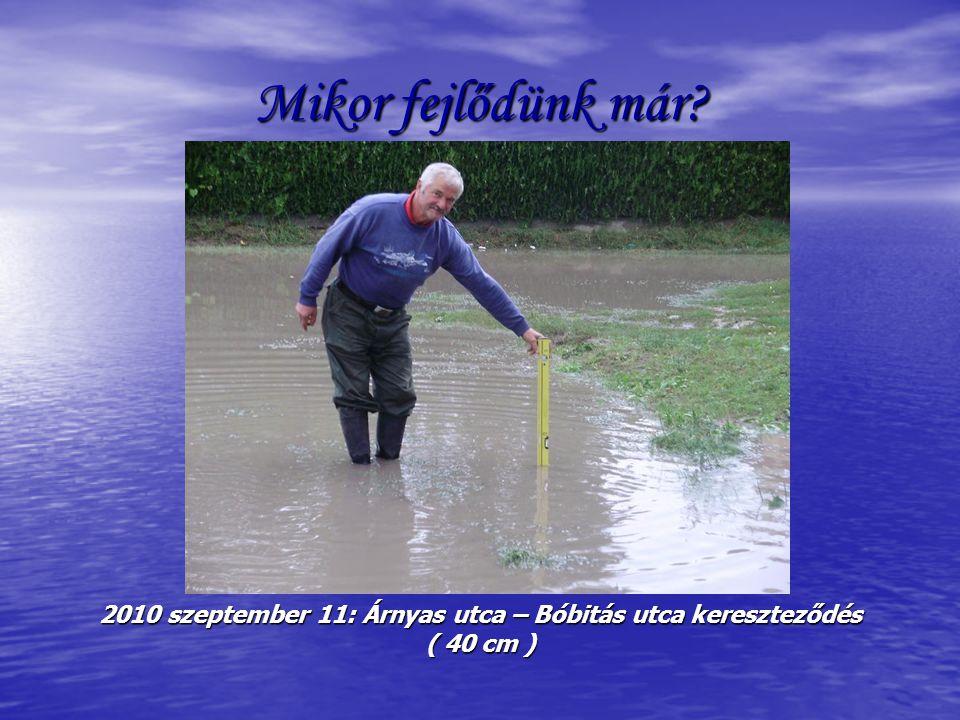 Mikor fejlődünk már 2010 szeptember 11: Árnyas utca – Bóbitás utca kereszteződés ( 40 cm )