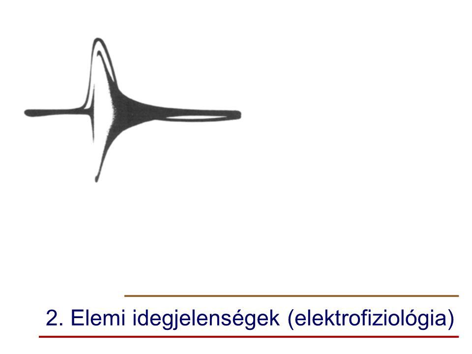 2. Elemi idegjelenségek (elektrofiziológia)