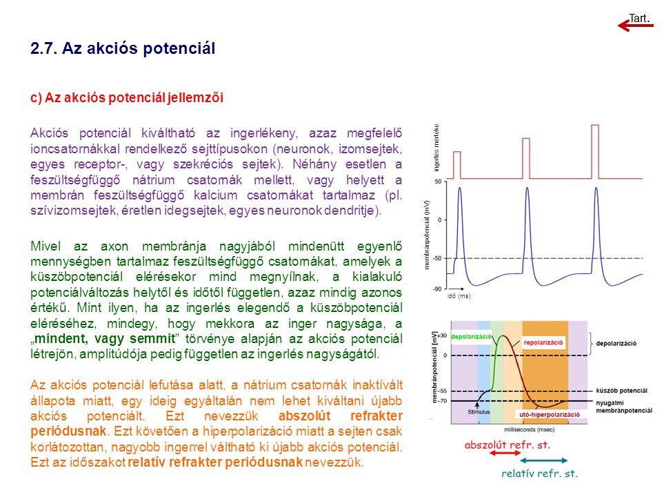 2.7. Az akciós potenciál c) Az akciós potenciál jellemzői Akciós potenciál kiváltható az ingerlékeny, azaz megfelelő ioncsatornákkal rendelkező sejttí