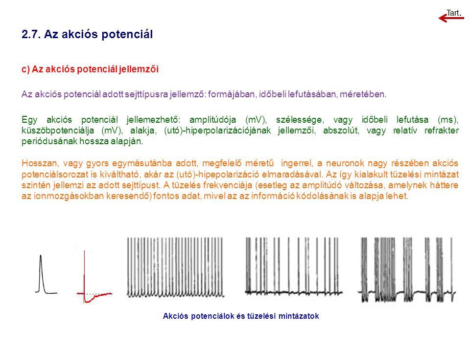 2.7. Az akciós potenciál c) Az akciós potenciál jellemzői Az akciós potenciál adott sejttípusra jellemző: formájában, időbeli lefutásában, méretében.