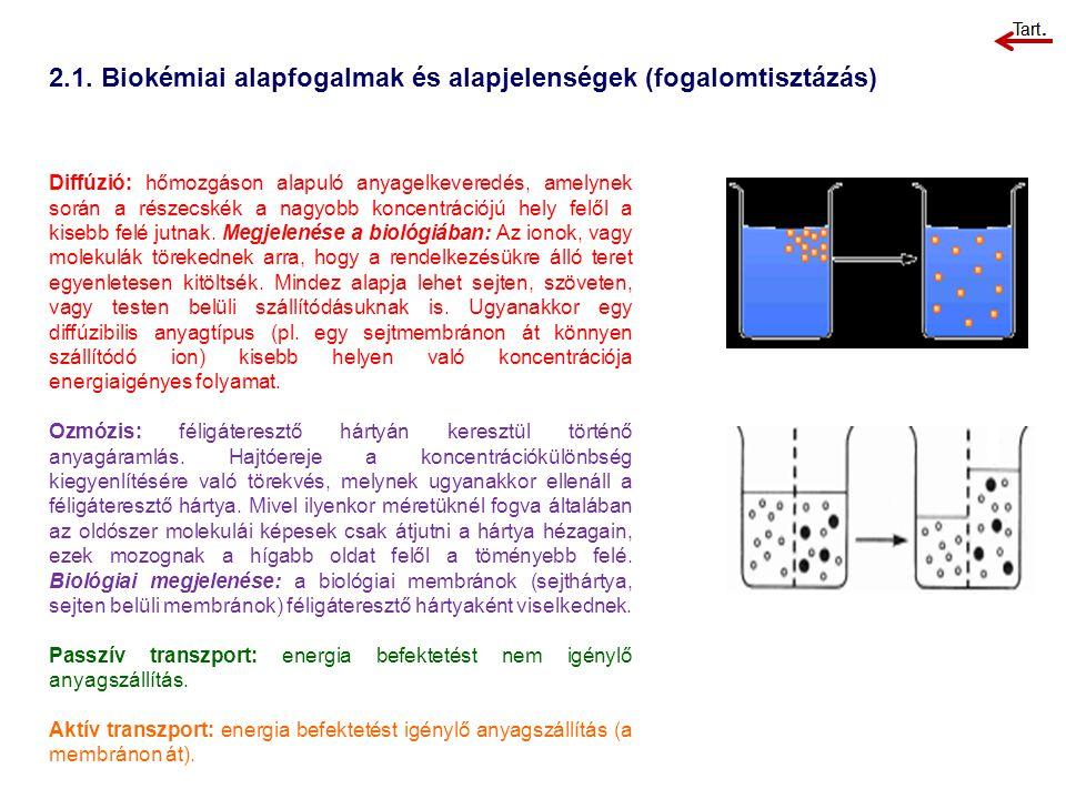 2.1. Biokémiai alapfogalmak és alapjelenségek (fogalomtisztázás) Diffúzió: hőmozgáson alapuló anyagelkeveredés, amelynek során a részecskék a nagyobb