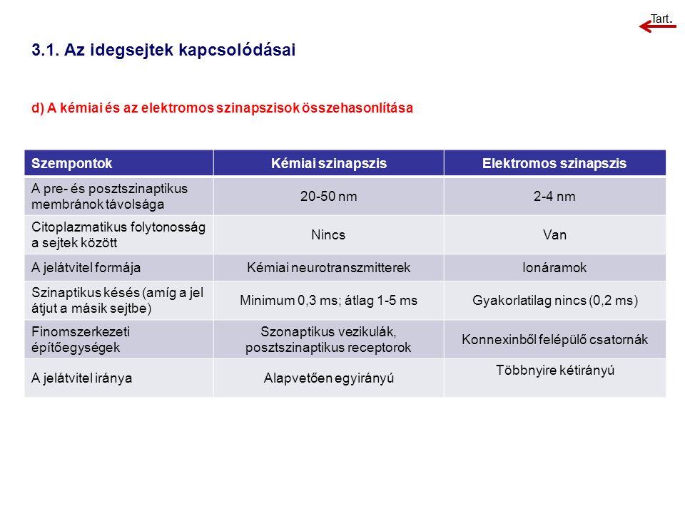 3.1. Az idegsejtek kapcsolódásai d) A kémiai és az elektromos szinapszisok összehasonlítása SzempontokKémiai szinapszisElektromos szinapszis A pre- és