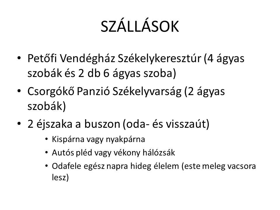 INDULÁS • Kőrösi Csoma Sándor Általános Iskola előtti térről • 2011.
