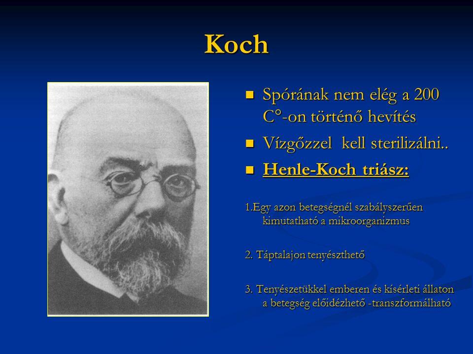 Koch  Spórának nem elég a 200 C°-on történő hevítés  Vízgőzzel kell sterilizálni..