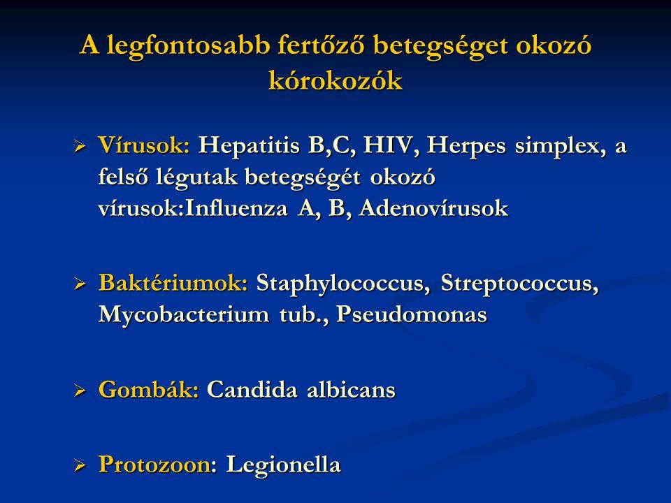 A legfontosabb fertőző betegséget okozó kórokozók  Vírusok: Hepatitis B,C, HIV, Herpes simplex, a felső légutak betegségét okozó vírusok:Influenza A, B, Adenovírusok  Baktériumok: Staphylococcus, Streptococcus, Mycobacterium tub., Pseudomonas  Gombák: Candida albicans  Protozoon: Legionella