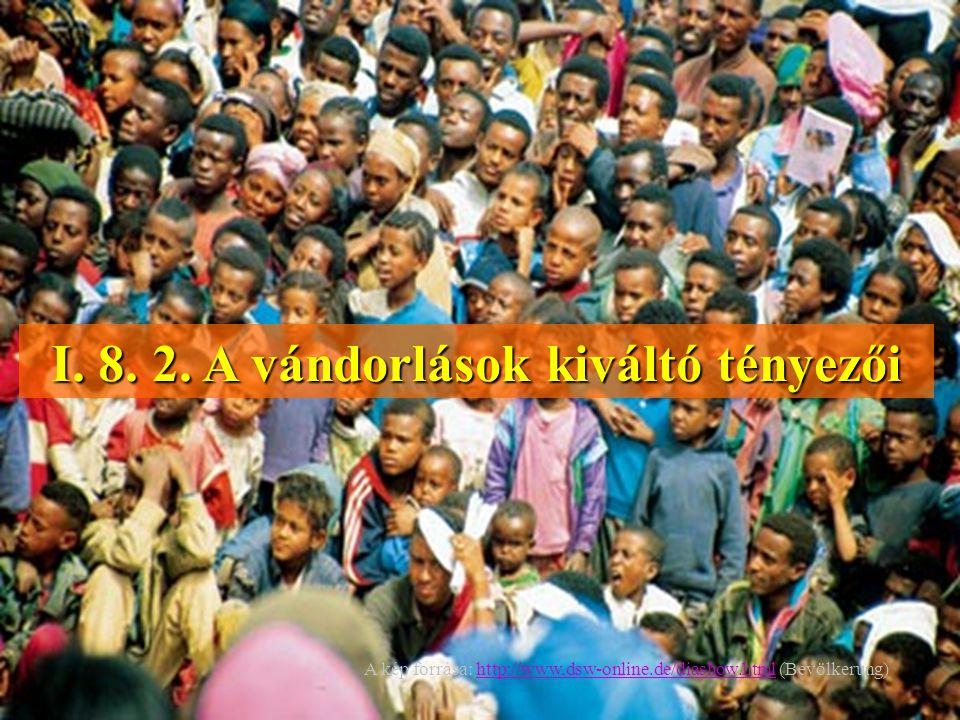 I. 8. 2. A vándorlások kiváltó tényezői A kép forrása: http://www,dsw-online.de/diashow.html (Bevölkerung)http://www,dsw-online.de/diashow.html