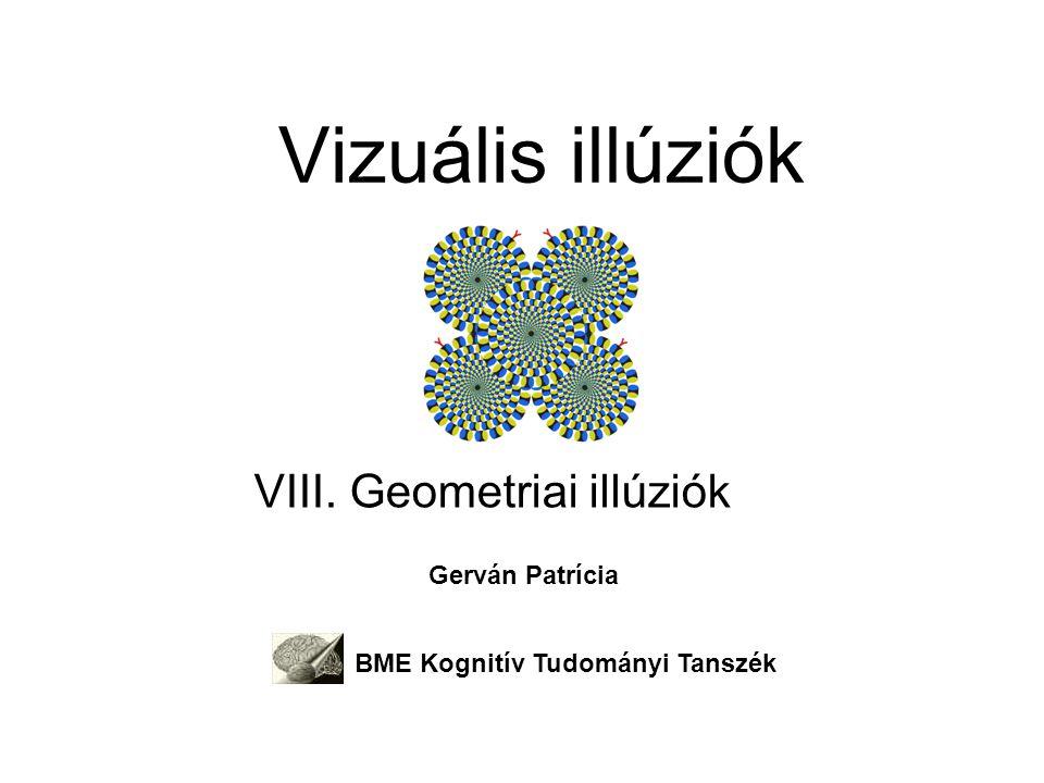A két látórendszer disszocációja az Ebbinghaus illúzió segítségével Felcsippentési feladat – Dorzális pályát célozza Becslési feladat – Ventrális pályát célozza Sok tévedés.