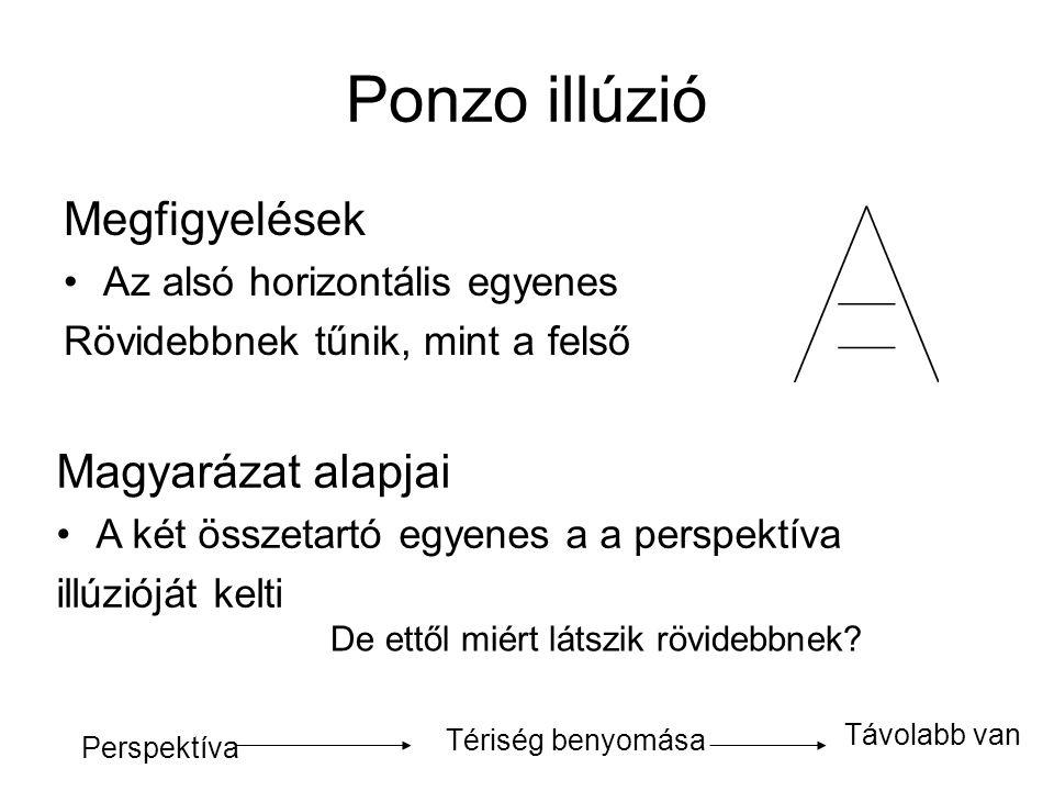 Megfigyelések •Az alsó horizontális egyenes Rövidebbnek tűnik, mint a felső Magyarázat alapjai •A két összetartó egyenes a a perspektíva illúzióját ke