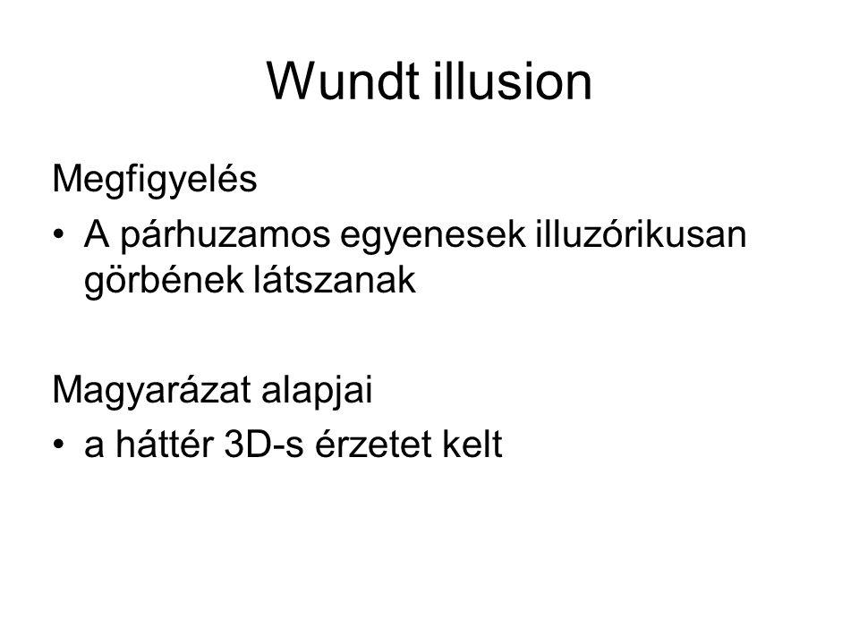 Megfigyelés •A párhuzamos egyenesek illuzórikusan görbének látszanak Magyarázat alapjai •a háttér 3D-s érzetet kelt Wundt illusion