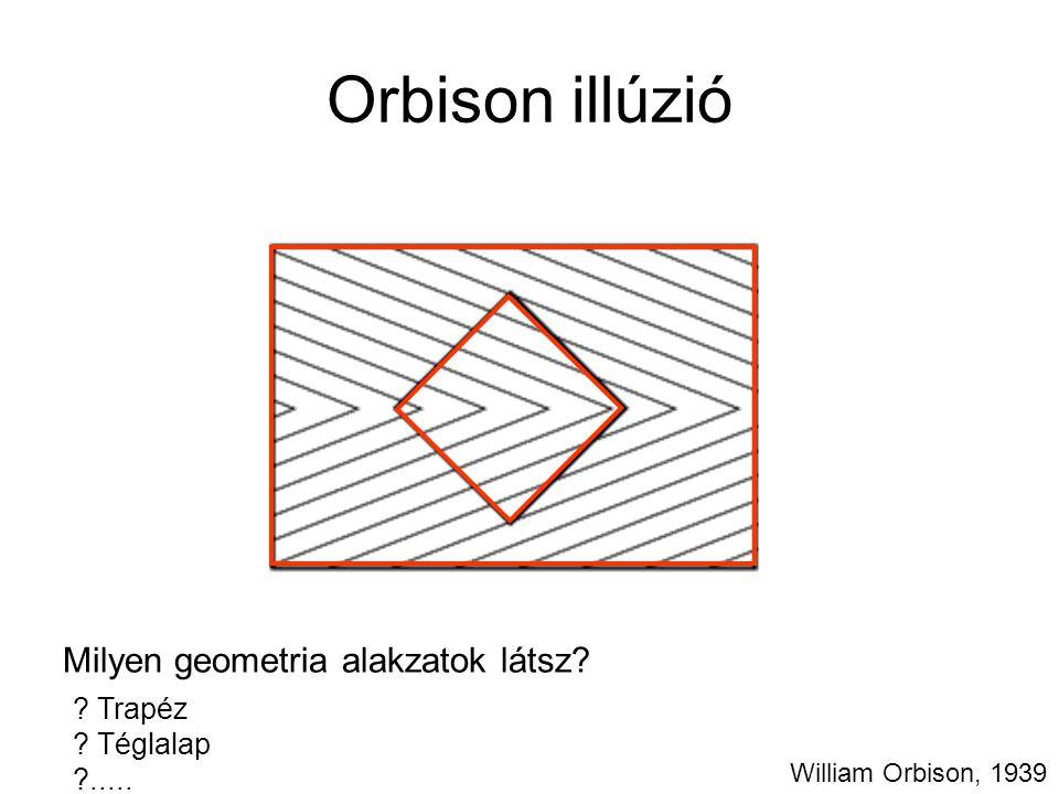 Orbison illúzió Milyen geometria alakzatok látsz? ? Trapéz ? Téglalap ?..... William Orbison, 1939