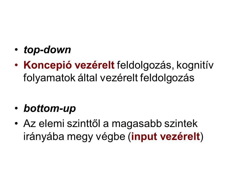 •top-down •Koncepió vezérelt feldolgozás, kognitív folyamatok által vezérelt feldolgozás •bottom-up •Az elemi szinttől a magasabb szintek irányába meg