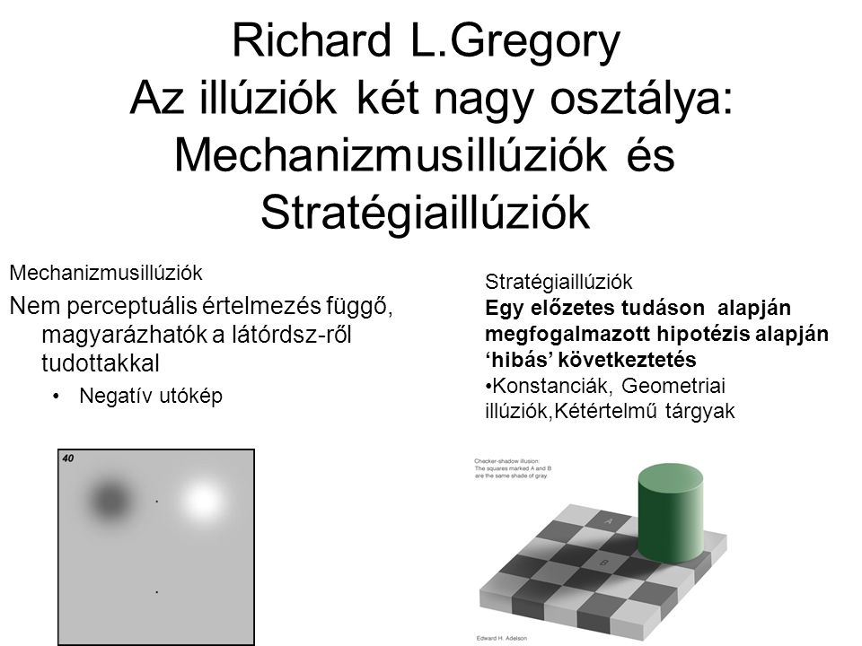Richard L.Gregory Az illúziók két nagy osztálya: Mechanizmusillúziók és Stratégiaillúziók Mechanizmusillúziók Nem perceptuális értelmezés függő, magyarázhatók a látórdsz-ről tudottakkal •Negatív utókép Stratégiaillúziók Egy előzetes tudáson alapján megfogalmazott hipotézis alapján 'hibás' következtetés •Konstanciák, Geometriai illúziók,Kétértelmű tárgyak