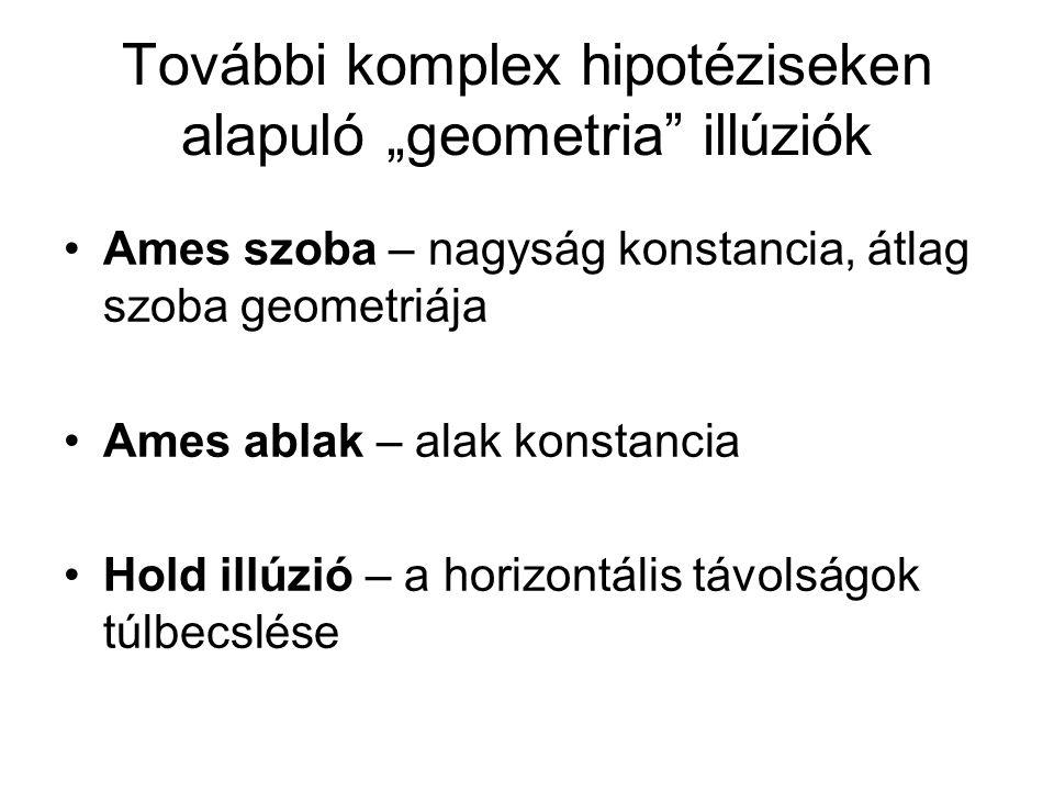 """További komplex hipotéziseken alapuló """"geometria"""" illúziók •Ames szoba – nagyság konstancia, átlag szoba geometriája •Ames ablak – alak konstancia •Ho"""