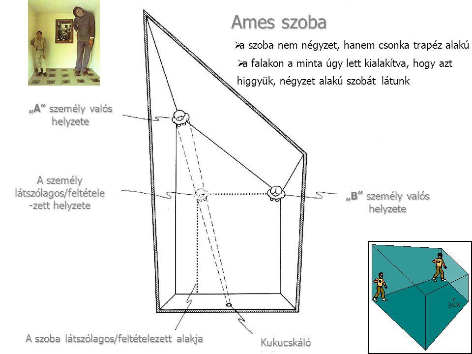 """""""A személy valós helyzete A személy látszólagos/feltétele -zett helyzete A szoba látszólagos/feltételezett alakja Kukucskáló """"B személy valós helyzete Ames szoba  a szoba nem négyzet, hanem csonka trapéz alakú  a falakon a minta úgy lett kialakítva, hogy azt higgyük, négyzet alakú szobát látunk"""