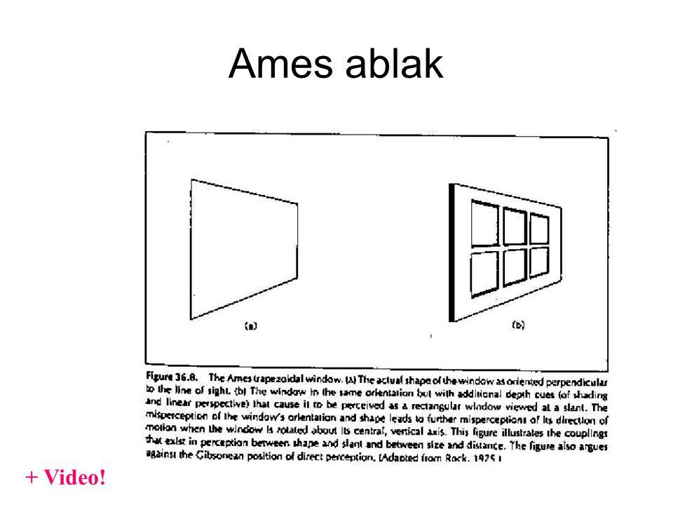 Ames ablak + Video!