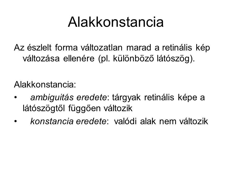 Alakkonstancia Az észlelt forma változatlan marad a retinális kép változása ellenére (pl. különböző látószög). Alakkonstancia: • ambiguitás eredete: t
