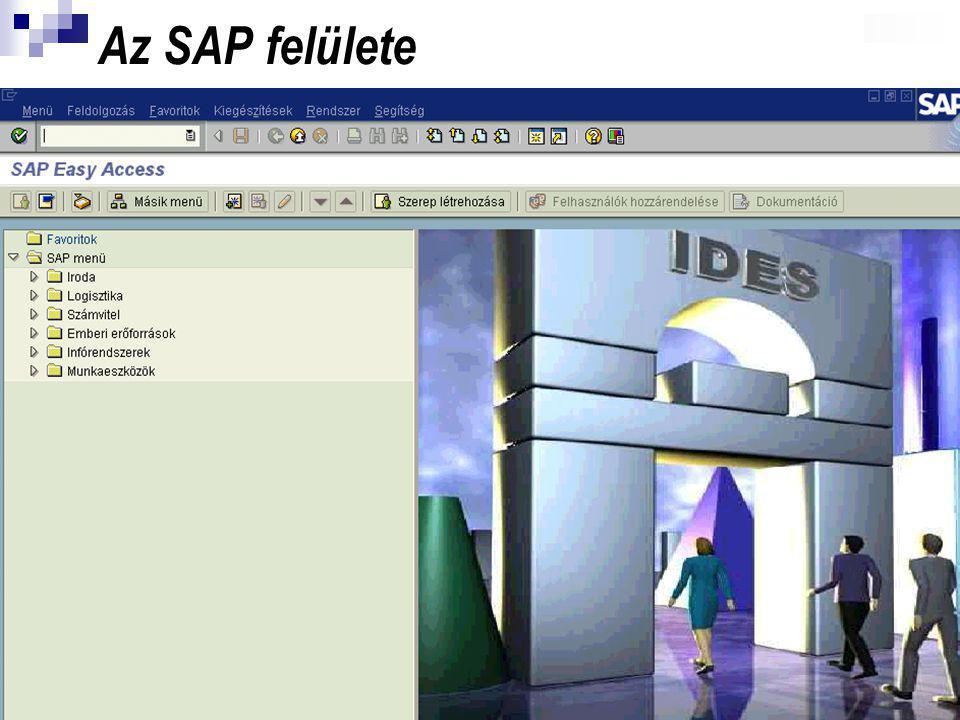 16 Az SAP felülete