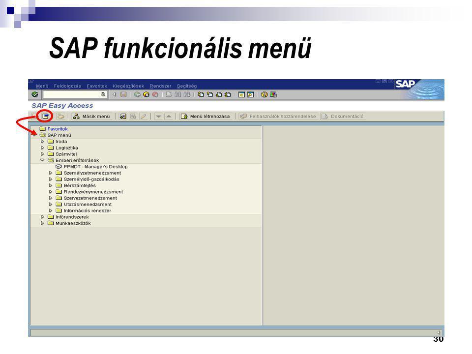 30 SAP funkcionális menü