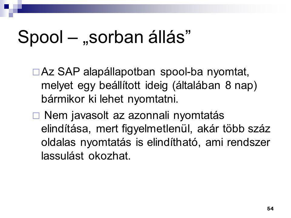 """54 Spool – """"sorban állás""""  Az SAP alapállapotban spool-ba nyomtat, melyet egy beállított ideig (általában 8 nap) bármikor ki lehet nyomtatni.  Nem j"""